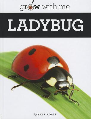 Ladybug By Riggs, Katie